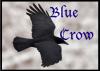 blue-crow