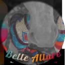 Photo de Belle-Allure