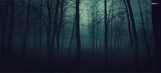 La forêt noir de Blair.