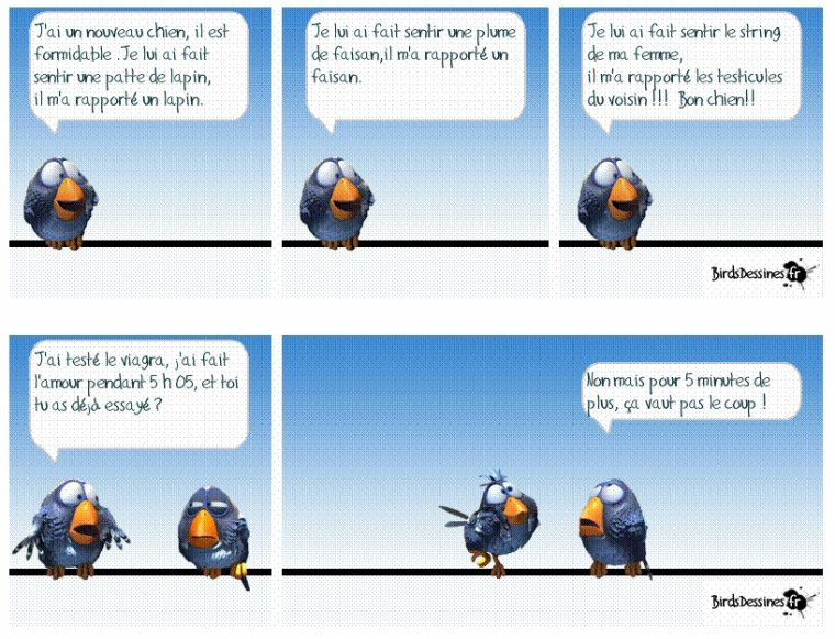 Les blagues du week end