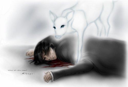 La mort de Severus...