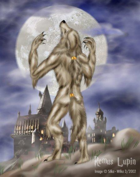 Remus Lupin (Moony)