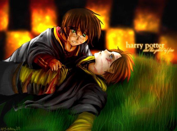 Scène Harry Potter et la Coupe de Feu