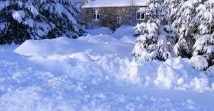 avec la neige de févier bonne semaine