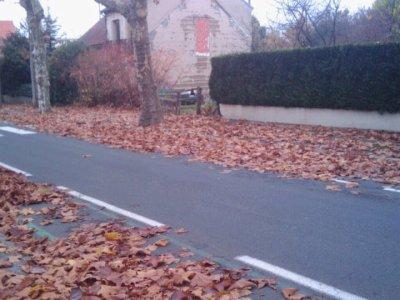 la preuve que l'automne est bien arrivé ...