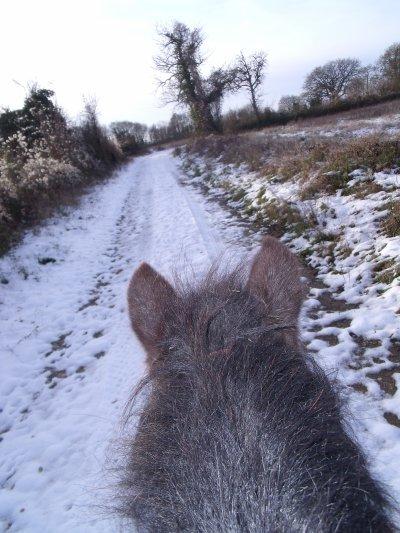 Mon petit poney, mon petit poney.... Elle avait le feu au cul aujourd'hui XD