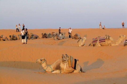 vue de désert au sud de tunisie
