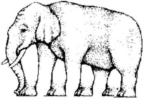 Test optique n°3: Combien de pattes a cet éléphant ?
