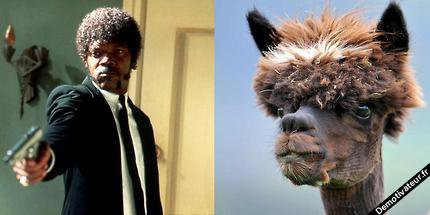 Ressemblance :D
