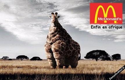 Enfin un McDonald en Afrique !