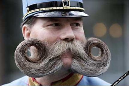 jolie moustache ^^