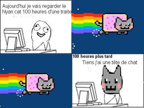 A force de regarder Nyan Cat