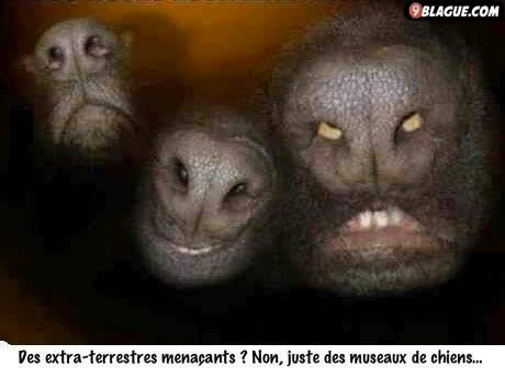 Des extraterrestres ?