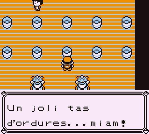 Le dresseur Pokémon a des goûts bizarres