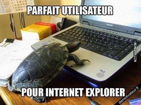 Parfait utilisateur pour Internet Explorer