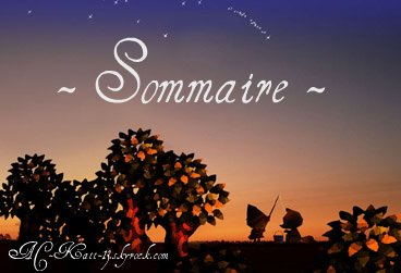 ☆  Sommaire  ☆