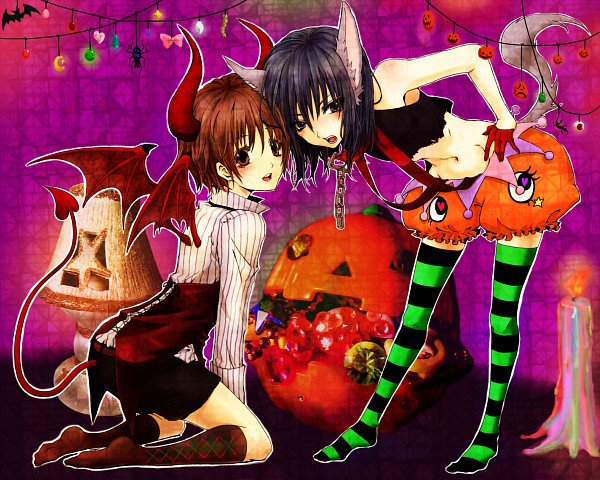 Halloween / The curious child