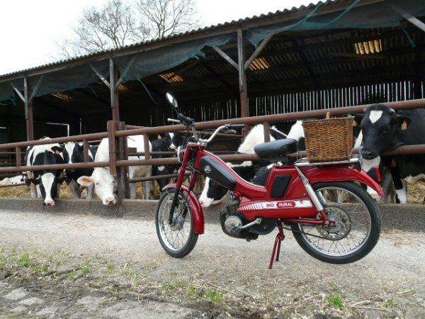 """Mobylette GAC AV 90 """"Rural"""""""