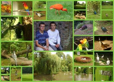 Après-midi nature au Parc de Clères...