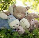 Photo de Mon-bebe-bio