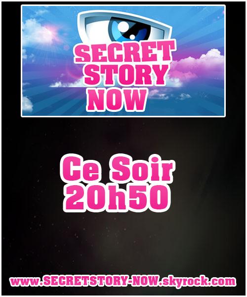 Plus que quelque heures avant le lancement officiel de Secret Story saison 5 !