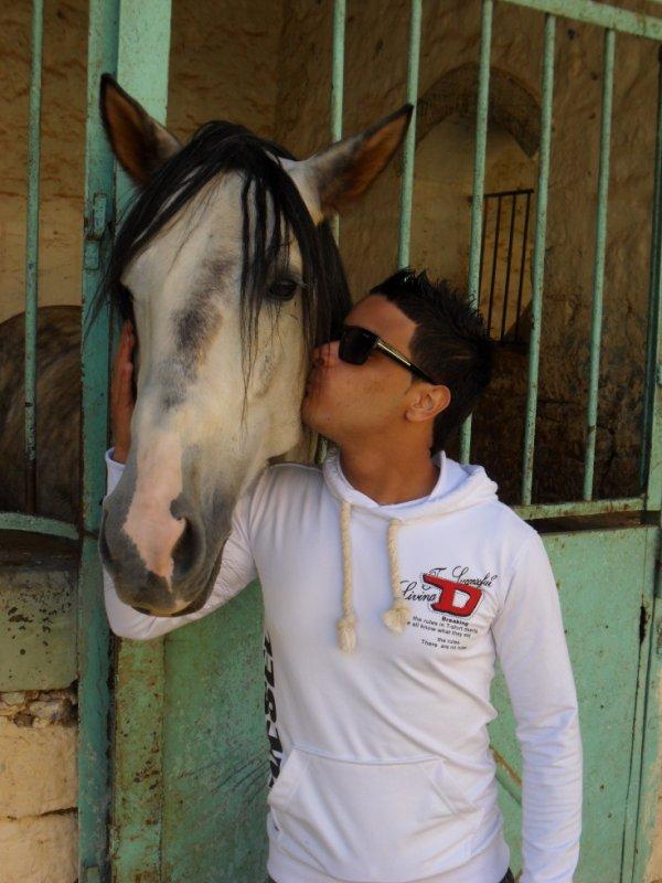 jaime mon cheval