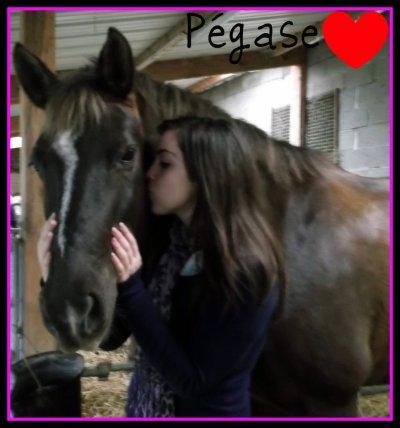 Pour parler à un cheval, il n'y a pas besoin de mots. C'est une étreinte charnelle qui alimente nos rêves.