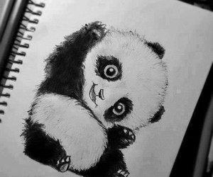 Cut Panda Blog De Image And Photo Love