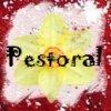 Pestoral