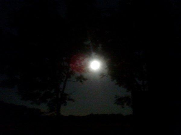 N'essaie pas d'atteindre la lune quand tu n'as déjà pas la force de sortir de ton lit...