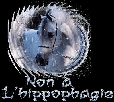 /!\    STOP A L'HIPPOPHAGIE   /!\