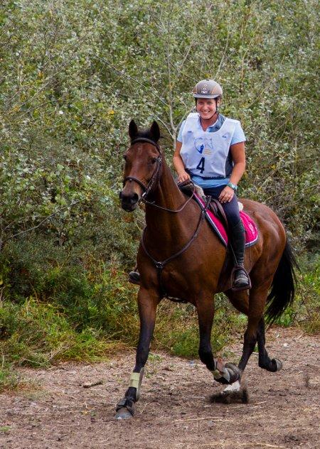 """Extrait des Cahiers Arts équestres :  """"Le cheval : un dieu ?  Et l'équitation : une religion ? """" par Jean Louis Gouraud ."""