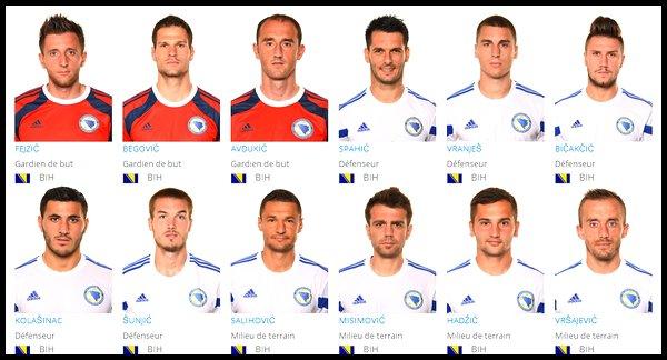 Groupe F : Bosnie-Herzégovine