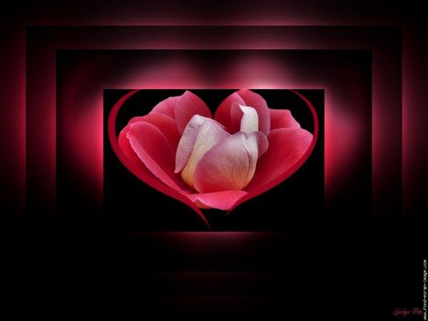 Bonne Saint Valentin à toutes et tous (l) (l) (l)