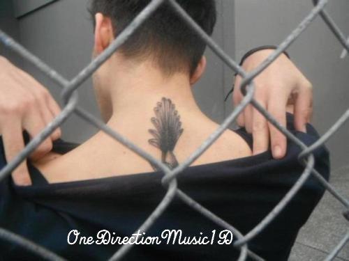 Via Twitter + Une autre image du tatouage de Zayn qui est plus visible. +Les fans attendant les garçons en dehors de leur hôtel à Wellington + Interview pour MTV en Australie. + Interview des garçons en Australie.
