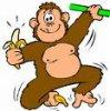monkeys72