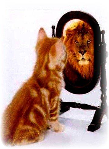On ce donne chacun une image de soi que les autres n'arrive pas a persevoir.