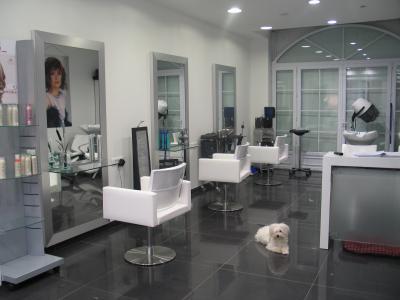 Mon salon de coiffure ma tite vie de pr ncess for Mon salon design