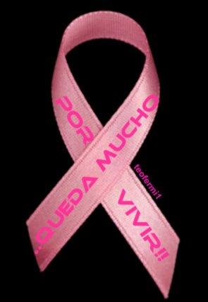 Imagenes Lazos Rosas Cancer.19 De Octubre Dia Mundial Contra El Cancer De Mama