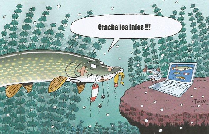 LE HAUT-RHIN DIT : JE SUIS CHARLIE ET NON CHARLY !!!