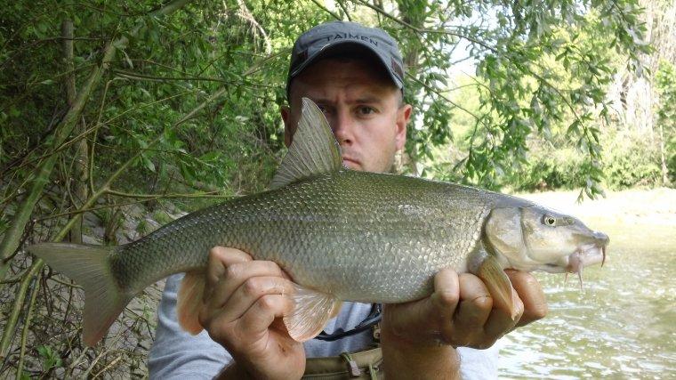 Pêche en eaux troubles !!!