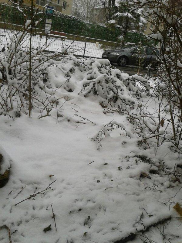 la neige sur paris
