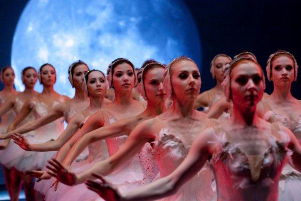 Le lac des cygnes est en quelque sorte le personnage principal du film Black Swan. C'est ce ballet de Tchaïkovski qui révélera Nina et la poussera à affronter ses démons.
