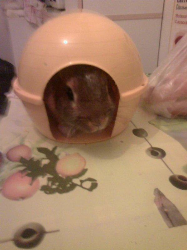 Mon chu ~ chez lui !! That so cutie ~~