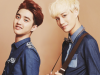 Happy Birthday 생일 Kai et D.O EXO-K [12/01] et [14/01] <3 ~~