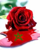 Photo de marokiya88