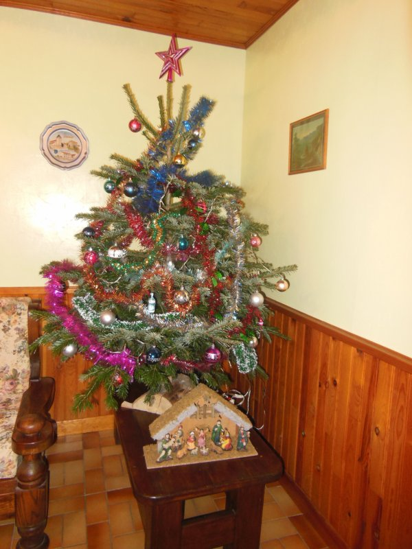 NOTRE SAPIN 2017 !!!