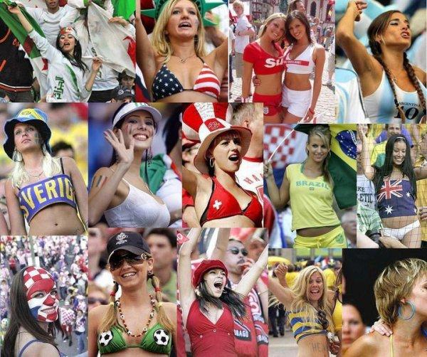 Qui sont les meilleurs supporters au monde ?