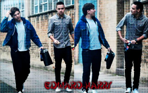 07.01 - Harry à été vue à l'aéroport de Londres.