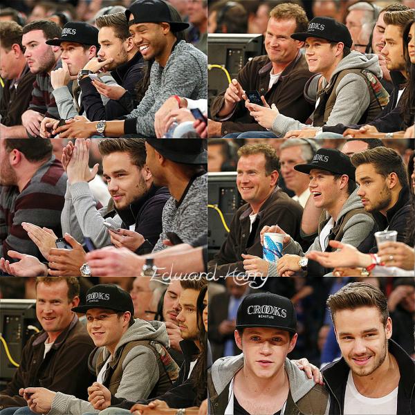 06.12 - Niall et Liam  au match des Knicks à NY.